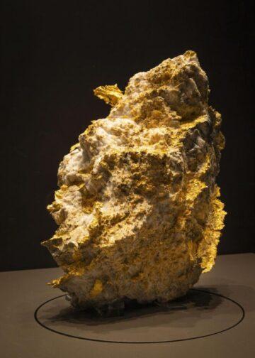 Pepita de oro 'King Henry'